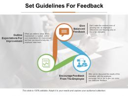 Set Guidelines For Feedback Ppt Infographic Template Objects