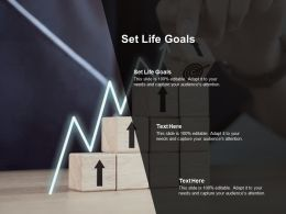 Set Life Goals Ppt Powerpoint Presentation Show Structure Cpb