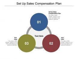 Set Up Sales Compensation Plan Ppt Powerpoint Presentation Model Skills Cpb