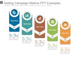 Setting Campaign Metrics Ppt Examples