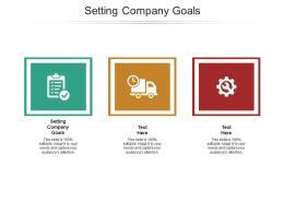 Setting Company Goals Ppt Powerpoint Presentation Inspiration Portrait Cpb