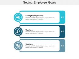 Setting Employee Goals Ppt Powerpoint Presentation Icon Master Slide Cpb