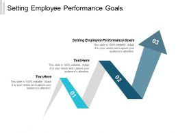 Setting Employee Performance Goals Ppt Powerpoint Presentation Infographics Cpb