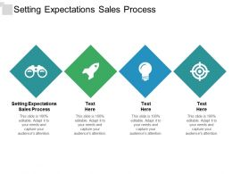 Setting Expectations Sales Process Ppt Powerpoint Presentation Inspiration Background Images Cpb