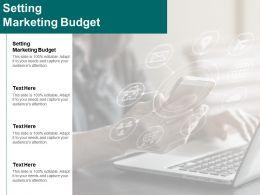 Setting Marketing Budget Ppt Powerpoint Presentation Inspiration Infographics Cpb