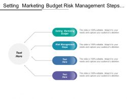 setting marketing budget risk management steps model bcg cpb