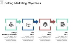 Setting Marketing Objectives Ppt Powerpoint Presentation Infographic Template Design Templates Cpb