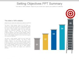 Setting Objectives Ppt Summary