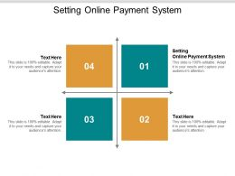 Setting Online Payment System Ppt Powerpoint Presentation Icon Show Cpb
