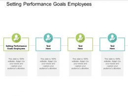 Setting Performance Goals Employees Ppt Powerpoint Presentation Ideas Summary Cpb