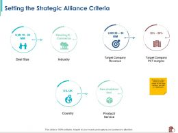 Setting The Strategic Alliance Criteria Target Company Ppt Powerpoint Presentation Styles Samples