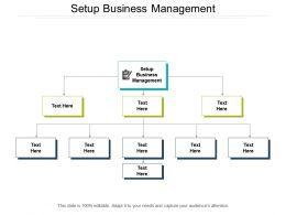 Setup Business Management Ppt Powerpoint Presentation Slides Layout Ideas Cpb
