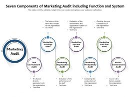 Seven Components Of Marketing Audit Including Function And System