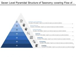 Seven Level Pyramidal Structure Of Taxonomy Covering Flow Of Process Stages