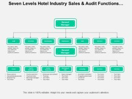 Seven Levels Hotel Industry Sales And Audit Functions Org Chart