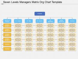 seven_levels_managers_matrix_org_chart_template_Slide01
