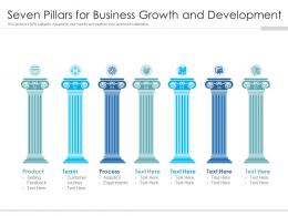 Seven Pillars For Business Growth And Development