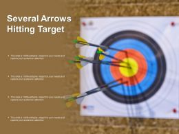 Several Arrows Hitting Target