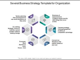 Several Business Strategy Template For Organization