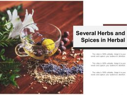 Several Herbs And Spices In Herbal