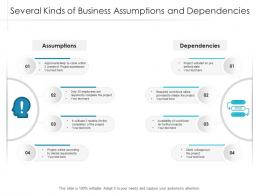 Several Kinds Of Business Assumptions And Dependencies