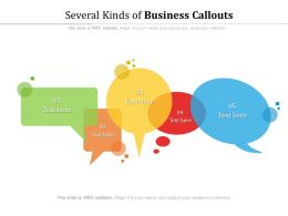 Several Kinds Of Business Callouts