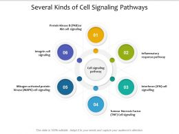 Several Kinds Of Cell Signaling Pathways