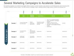 Several Marketing Campaigns To Accelerate Sales Company Expansion Through Organic Growth Ppt Grid