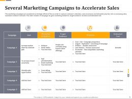 Several Marketing Campaigns To Accelerate Sales Ppt File Slides