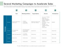 Several Marketing Campaigns To Accelerate Sales Ppt Influencers