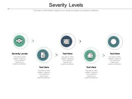 Severity Levels Ppt Powerpoint Presentation Icon Elements Cpb