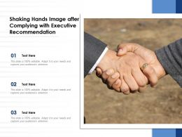 Shaking Hands Image After Complying With Executive Recommendation