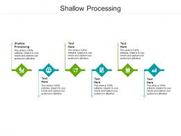 Shallow Processing Ppt Powerpoint Presentation Show Icons Cpb