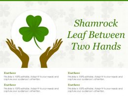 Shamrock Leaf Between Two Hands