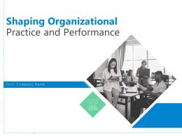 Shaping Organizational Practice And Performance Powerpoint Presentation Slides