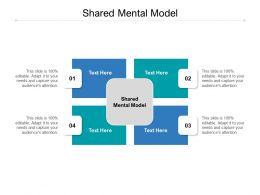 Shared Mental Model Ppt Powerpoint Presentation Professional Example Cpb