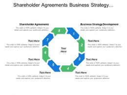 Shareholder Agreements Business Strategy Development Human Capital Development