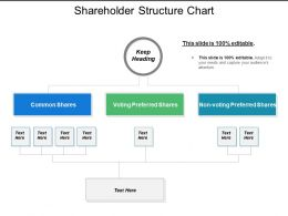 Shareholder Structure Chart