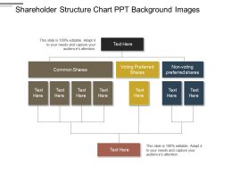 Shareholder Structure Chart Ppt Background Images