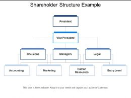 Shareholder Structure Example