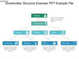 Shareholder Structure Example Ppt Example File