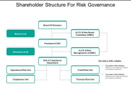Shareholder Structure For Risk Governance
