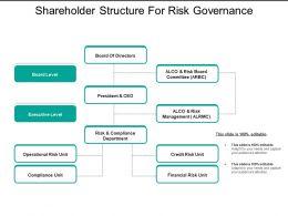 Shareholder Structure For Risk Governance