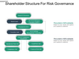 Shareholder Structure For Risk Governance Ppt Infographic Template