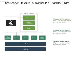 Shareholder Structure For Startups Ppt Examples Slides