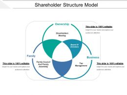 Shareholder Structure Model