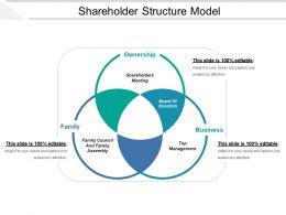 Shareholder Structure Model