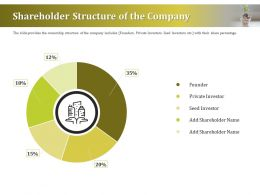Shareholder Structure Of The Company Ppt Format Ideas