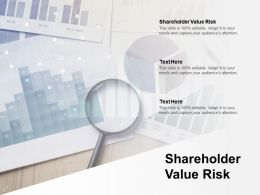 Shareholder Value Risk Ppt Powerpoint Presentation File Format Ideas Cpb
