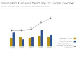 Shareholders Funds And Market Cap Ppt Sample Download